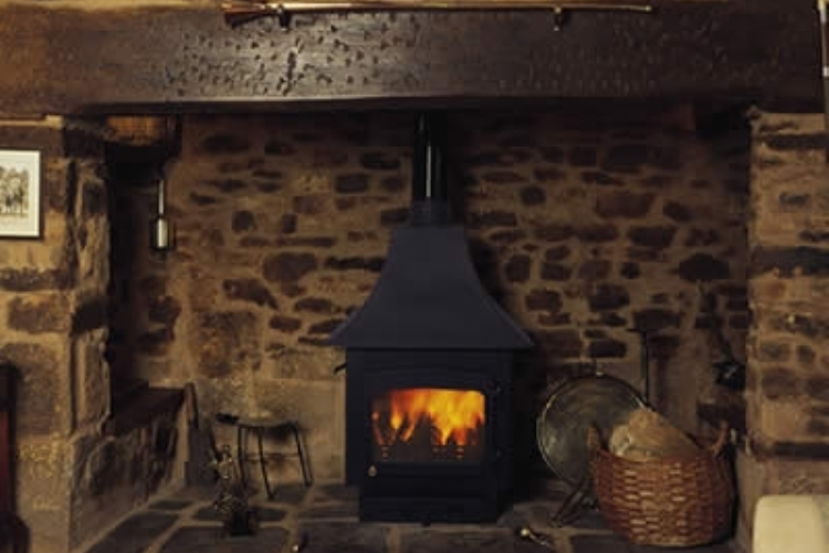 Woodwarm with Canopy in a traditional fireplace