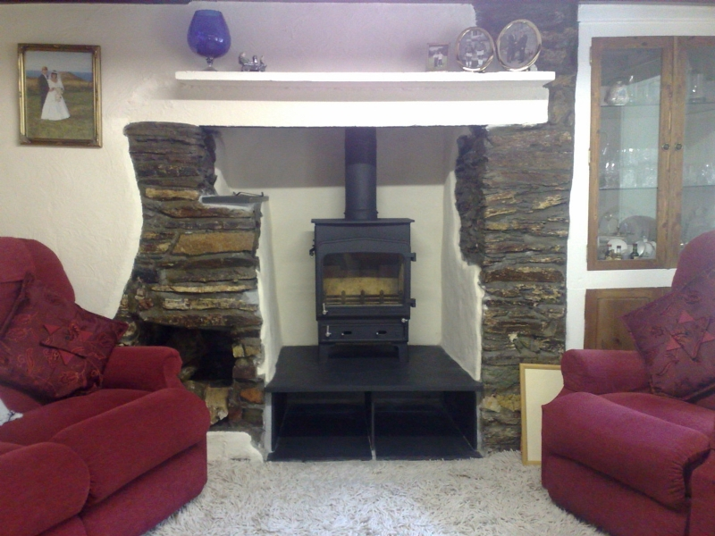 Woodwarm Fireview on a raised hearth