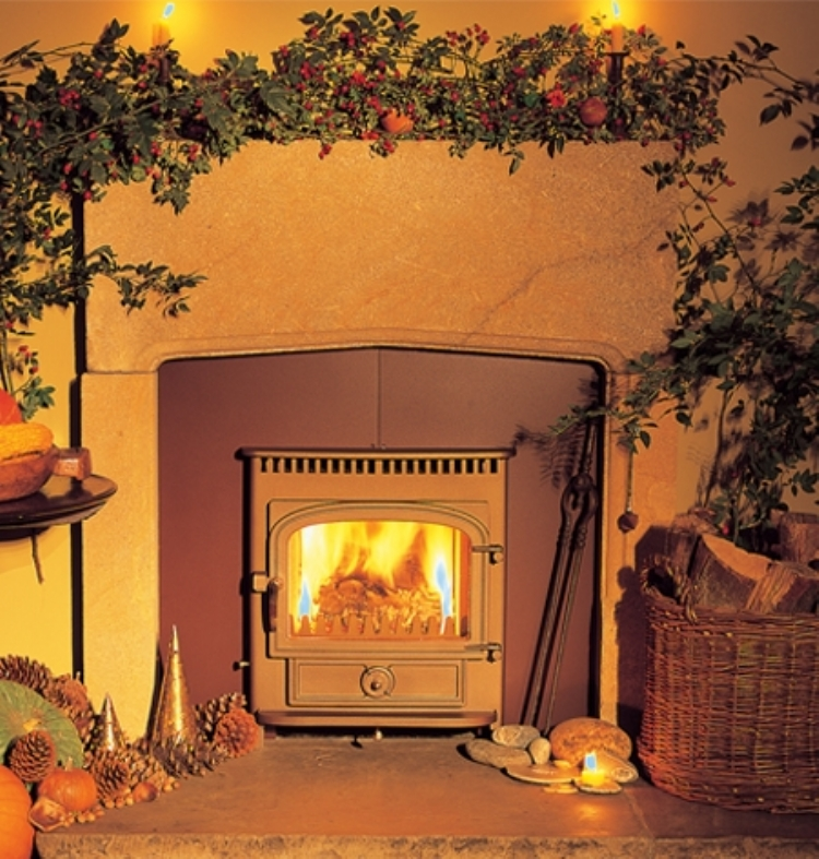 Clearview cornwall fireplace cornwall Vision Inset Woodburner Cornwall Wadebridge Redruth
