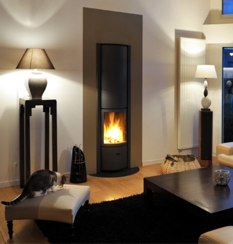 stuv 30 in Woodburner Cornwall Wadebridge Redruth