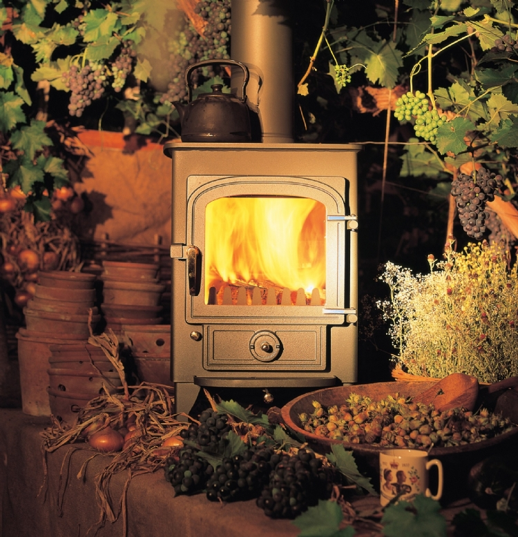 Clearview Pioneer Woodburner Cornwall Wadebridge Redruth